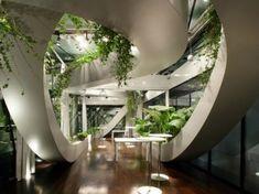 Lovely interior garden