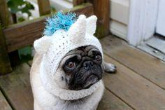 magical unicorn pug hat!