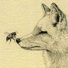 ARTWORK. I LOVE FOXES!!! >.<