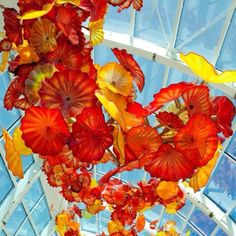 Chihuly in Seattle