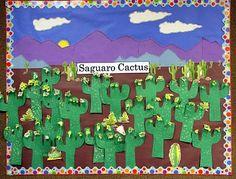 classroom, cacti, bulletin boards, diaries, dioramas