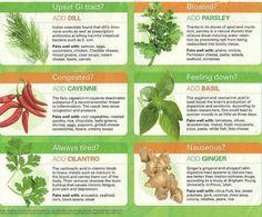 fit, herbs, food, heal herb, 10 herb, healthi, well, garden, natur remedi