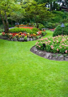 Great flower beds