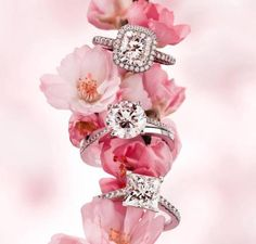 Beautiful diamonds rings! I would like to have the top one... all are so pretty!!