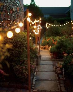 garden paths, party lighting outdoor, front yards, string lights, outdoor parties, garden parties, outdoor lighting party, backyard, party lights