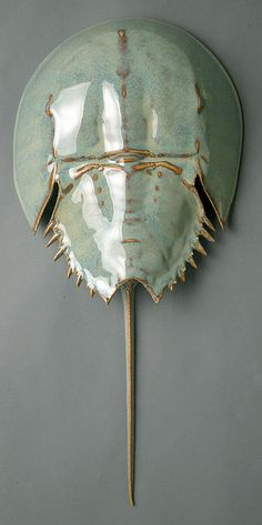 Horseshoe crab sculpture!