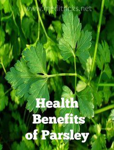 Health Benefits of Parsley | Medi Tricks