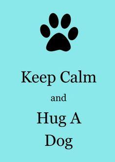 Hug a dog