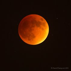 The Blood Moon, 2015