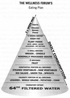 Wellness Forum Food Pyramid