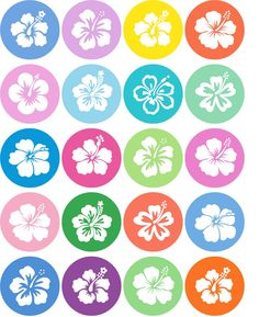 Printable Hibiscus Memory Game