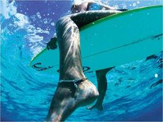 I need to learn to surf!