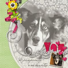 YouAreMyGift #Template and Scrapkit You are my Gift by #ConniePrince Photos by kpmelly (2006)
