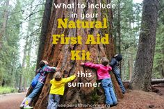 What to include in natural first aid kit this summer -- I share the 5 must-have items in my own kit, plus a few honorable mentions that would be helpful to include as well.