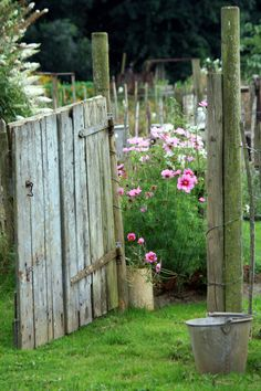 Love the flowers that greet you when you walk thru the gate! Farm, Rustic Gardens, Cottage Gardens, Cutting Garden, Garden Gates, Old Gates, Flowers Garden, August 2013, Garden Fences