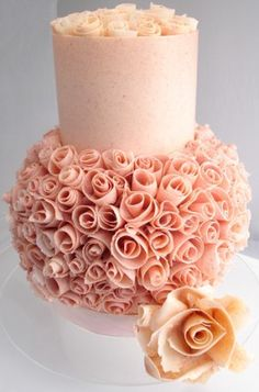 So pretty! Chocolate 'coral' top tier and modeling chocolate roses cover the bottom tier. ᘡղbᘠ