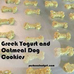 Greek Yogurt and Oatmeal Dog Cookies