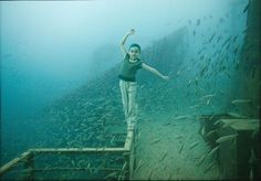 'Life Below The Surface' is a series by Advertising Photographer, Andreas Franke. In this underworld he constructs an illusionistic world by bringing life back into a real sunken ship, The Vandenberg. Andreas has been in the industry for over 20 years and was labeled '200 Best Ad Photographer Worldwide' several times. http://www.staudinger-franke.at