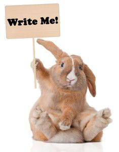 Attack of the Plot Bunnies | Divine Writer