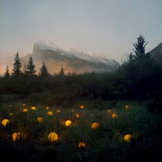 Barry Underwood examines the effect of light pollution on natural landscapes in a series of photographs that feel ethereal and fantastical, despite being rooted in reality.