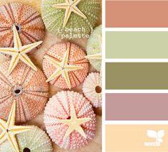 pastel, color palettes, design seeds, color schemes, color combos, color pallettes, color pallets, sea urchins, beach