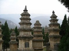 Pagado Forest  --- Shaolin Temple