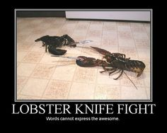 Lobster knife fight.