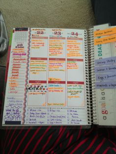 Erin Condren planner ideas