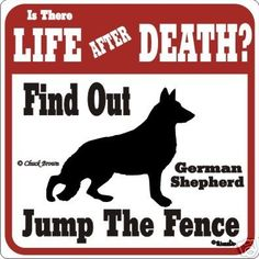 German shepherd warning!