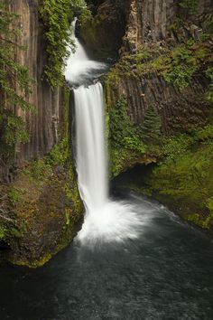 TOKETEE FALLS - OREGON