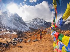 Top 25 Things to Do in Asia: 2014 Viator Travel Awards | Viator Travel Blog