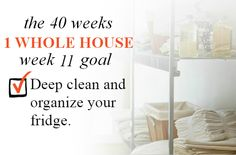 40 Weeks - 1 Whole House: Week 11 Goal - Deep Clean and Organize Your Fridge   Organize 365