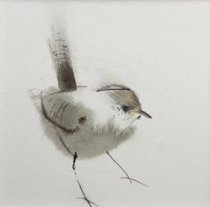 """Wren"" by Claire Harkness, watercolour"