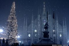 This Is a Wonderful Winter Is Covered In White And Waiting Christmas