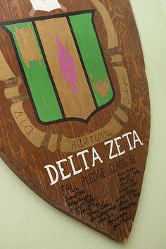 Delta Zeta at Ashland University