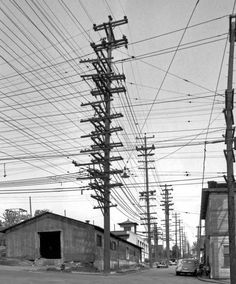 Photos from the Days When Thousands of Cables Crowded the Skies. Looking north up Albion from 36th Street in Seattle, Washington, 1952