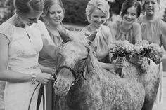 Bride and Bridesmaids with Pony at Equestrian Winery Wedding // Madison Rose Photography
