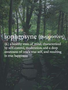 self awareness, inspir, word, sophrosyn, a tattoo, life goals, self control, quot, healthy bodies