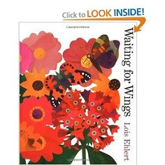 Waiting for Wings--Lois Ehlert. Gorgeous illustrations for flower/butterfly collage.