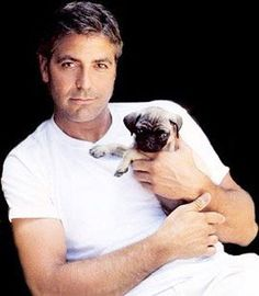 As if George Clooney wasn't dreamy enough... #dog