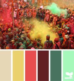 Holi hues