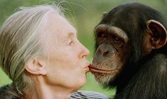 Dr. Jane Goodall.  The monkey is her +1