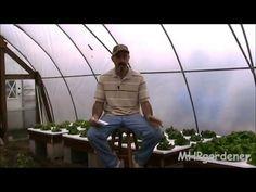 Hydroponic Fertilizer Followup : Comments & Suggestions
