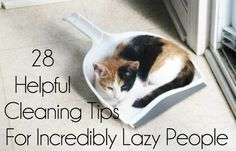 28 Helpful Cleaning Tips For Incredibly Lazy People - BuzzFeed Mobile