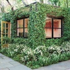 art studios, green, offic, sheds, gardens, backyard studio, hous, ivy, san francisco