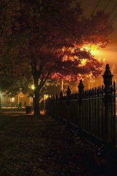 halloween night boston