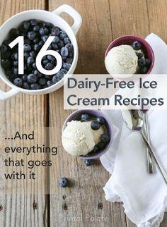 16 Dairy-Free Ice Cream Recipes #paleo