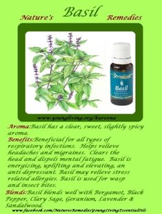 Nature's Remedies | Young Living Essential Oils