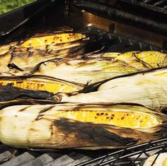 Corn On The Cob With Cajun Butter