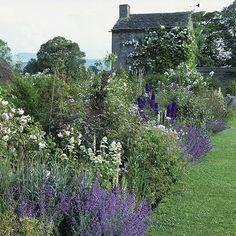 White, blue, and lavender flower border for an English cottage garden feel.